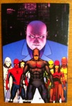 Shadowland Daredevil Marvel Universe 2012 Wave 17 Action Figure Collectible Card Shot